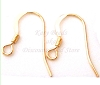 22 gauge Gold filled small flat with coil earring ear wire